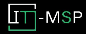 Insight IT-MSP